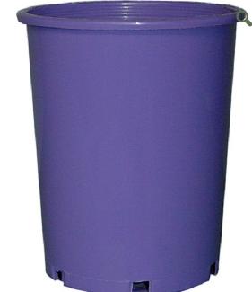 Maxi Pot